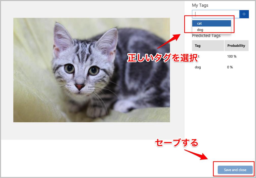 f:id:y-matsushita:20171031192748j:plain:w750